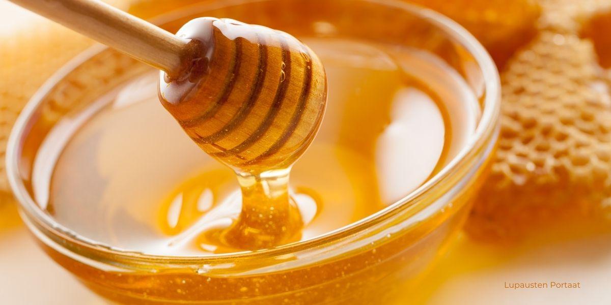 luonnon-nektariini-hunaja
